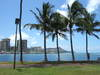 2006_0704hawaiireport10249_1