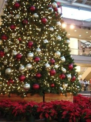 Christmas_tree_at_ala_moana_3